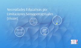 Necesidades educativas por limitaciones sensoperceptuales (V
