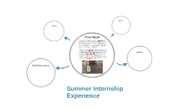 Summer Internship Experience