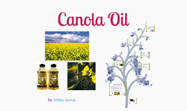 Canola Oil :  By:Ashley George