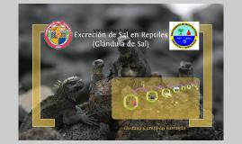 Copy of Excreción de Sal en Reptiles. Cumplido-Barragán.