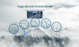Copy of Boreal Forest Biome  AKA Taiga