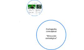 Cartografia conceptual: Direccion estrategica