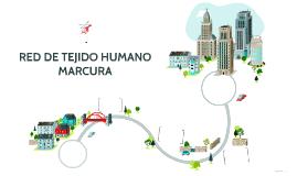 RED DE TEJIDO HUMANO MARCURA