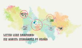 litter less campaign: ies miguel hernández de Ocña