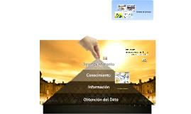 Copy of Sistema de Consulta Puebla