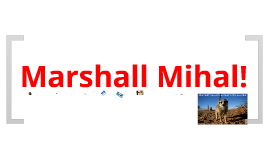 All about Marshall
