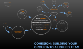Copy of COHESION: BULDING YOUR GROUP INTO A UNIFIED TEAM