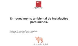 Enriquecimento ambiental de instalações para suínos.
