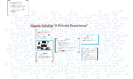 """Ngozie Adichie """"A Private Experience"""""""