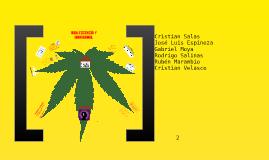 Adolescencia y Marihuana