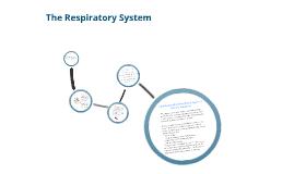 Year 10 PASS Respiratory System