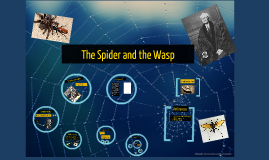 Copy of Spider and the Wasp