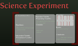 Copy of Science Experiment 2