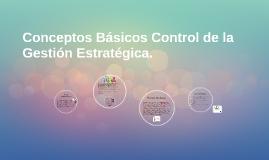 Conceptos Básicos Control de la Gestión Estratégica.