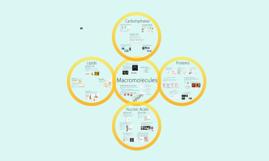 Copy of Chemistry 2:  Macromolecules