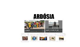 Copy of Ardósia 13