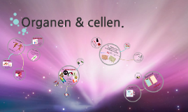 Copy of Organen & cellen.