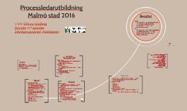 Processledarutbildning Malmö Stad 2016