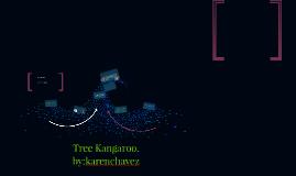 Tree Kangaroo.