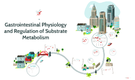 Gastrointestinal Physiology and Regulation of Substrate Meta