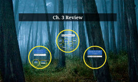 Ch. 3 Review