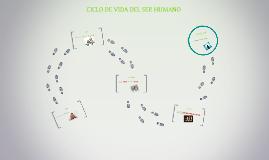 Copy of CICLO DE VIDA DEL SER HUMANO