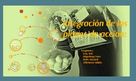 Planificación Estrátegica - Integración de los planes de acción