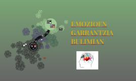 EMOZIOEN GARRANTZIA BULIMIAN