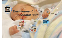 Environment in the neonatal unit