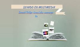 SONIDO MULTIMEDIA