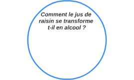 Comment le jus de raisin se transforme t-il en alcool