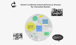Copy of Severe Combined Immunodeficiency Disease
