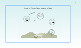 How to Grow Your Memory Tree