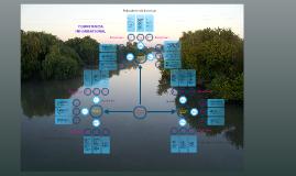 Copy of Competencia informacional. Modelo 3-3-3