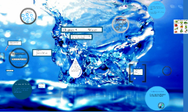 Water and Phytochemicals