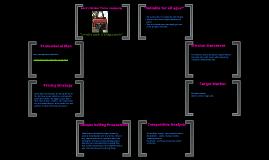 Marketing Plan for Binder Purses