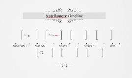Nutellamore Timeline
