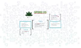 SPIRILUS