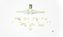 ¿Como planear?   Pasos Básicos del Cronograma