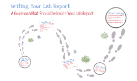 Writing Your Lab Report