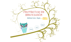 Presentación Asignatura Proyectos de Innovación