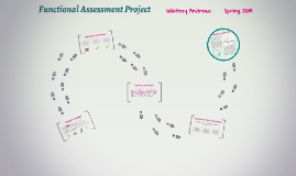 Functional Assessment Project