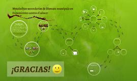 Metbolitos secundarios de Dionaea Muscipula en tratamientos