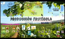 Copy of Circuito Productivo Frutícola del Alto Valle