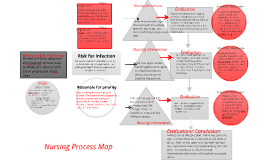Copy of Copy of concept map 1
