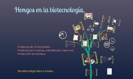 Copy of Hongos en la biotecnología