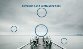 Copy of Comparing and Contrasting Cells (Awesome Students Period 5)