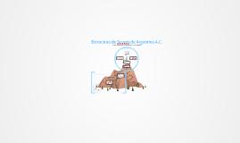 Estructura de Scouts de Argentina AC