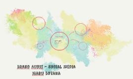 Brand Audit - Social Media