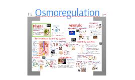 Copy of Regulation 3: Osmoregulation
